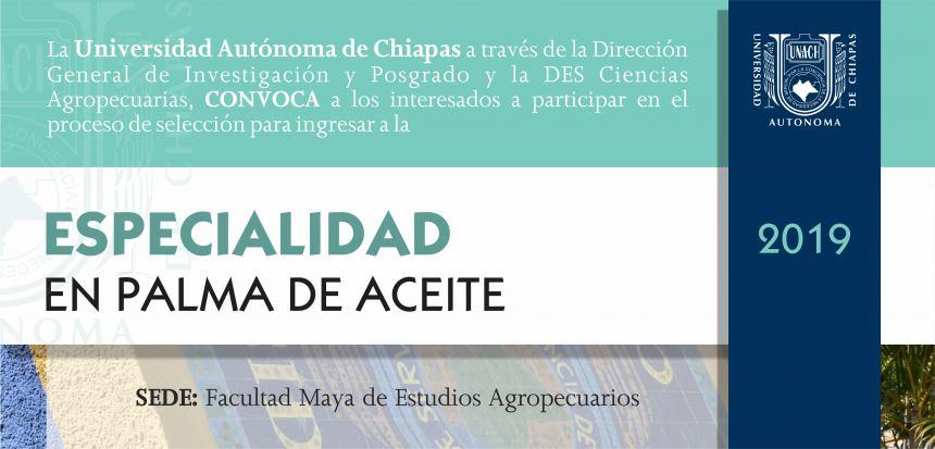 RECEPCIÓN DE DOCUMENTOS: DEL 17 AL 21 DE JUNIO DE 2019